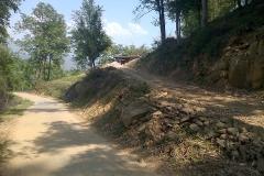 Bhalaridha (2)