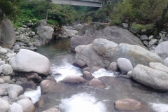 Bhalaridha (5)