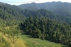 devidarh-mandi-himachal (12)