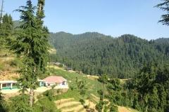 devidarh-mandi-himachal (14)