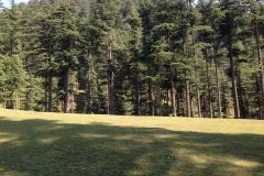devidarh-mandi-himachal (6)