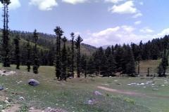 kamrunaag-valley-mandi