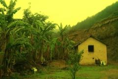 Bhalaridha Village Jogindernagar Mandi Himachal Pradesh
