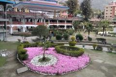 Sanket Garden Mandi Himachal Pradesh