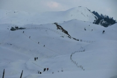 Trekking in winters Prashar Lake Mandi Himachal Pradesh