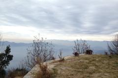 Saroa Top Chailchowk Mandi Himachal Pradesh