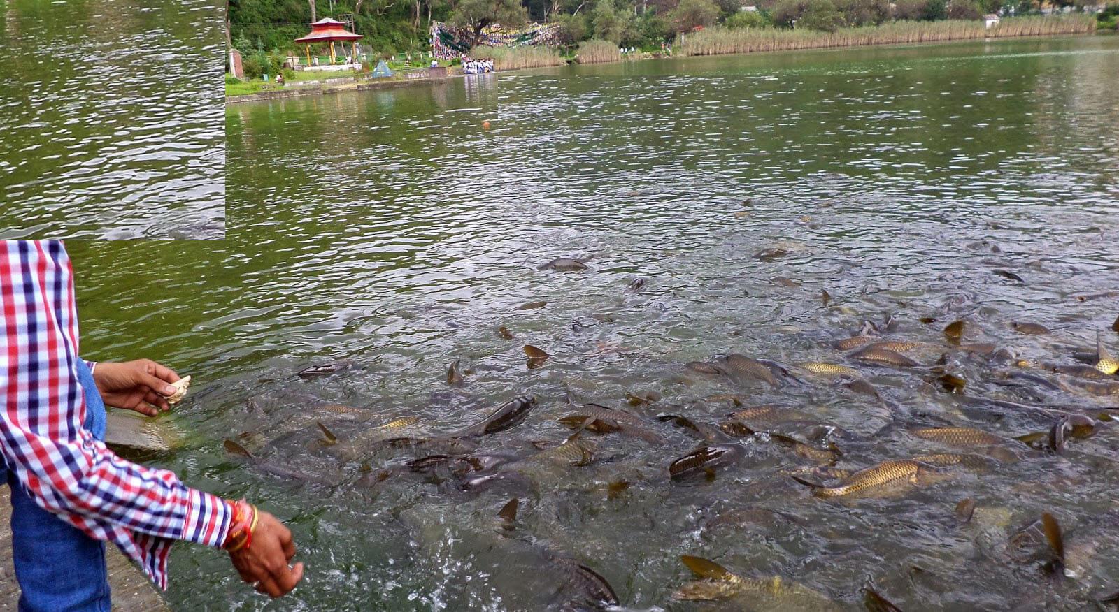 rewalsar-lake-issue-2