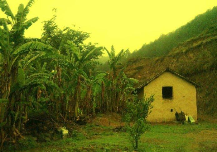Bhalaridha Village Mandi HP